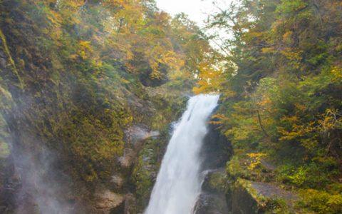 【仙台市太白区】日本の名瀑・秋の秋保大滝