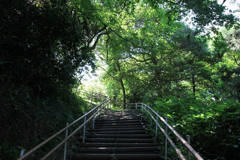 松島四大観 大高森